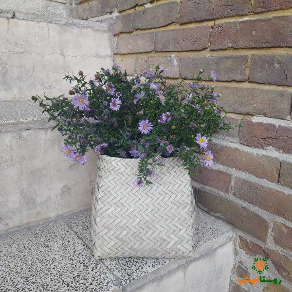 گلدان مربعی حصیری